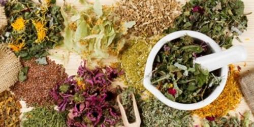 10 گام بلند برای استفاده از ظرفیت های ملی در حوزه گیاهان دارویی و طب سنتی